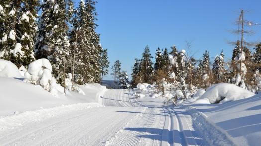 snow-3298238_1280.jpg
